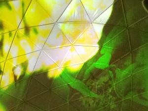20120815-142051.jpg