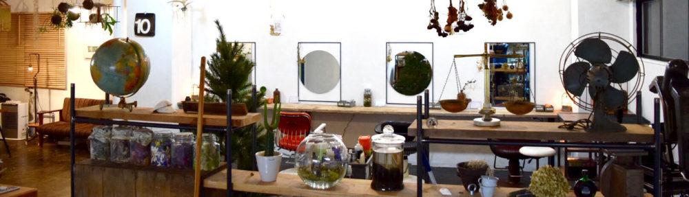 DROLL[ドロール] 札幌市中央区大通にある隠れ家的ヘアサロン/美容室
